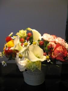 flower_20110227