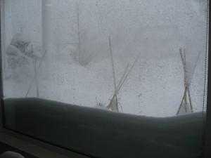 20110304_snow01