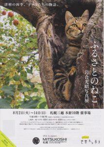 cat_photo01